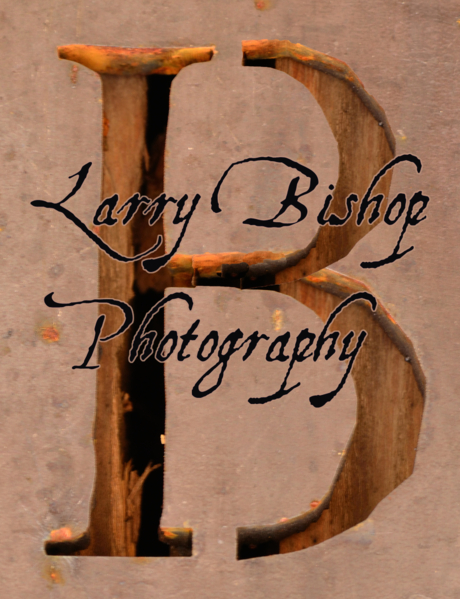 Larry Bishop
